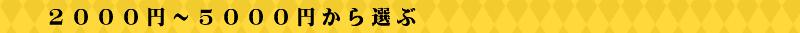 2000円~5000円から選ぶ