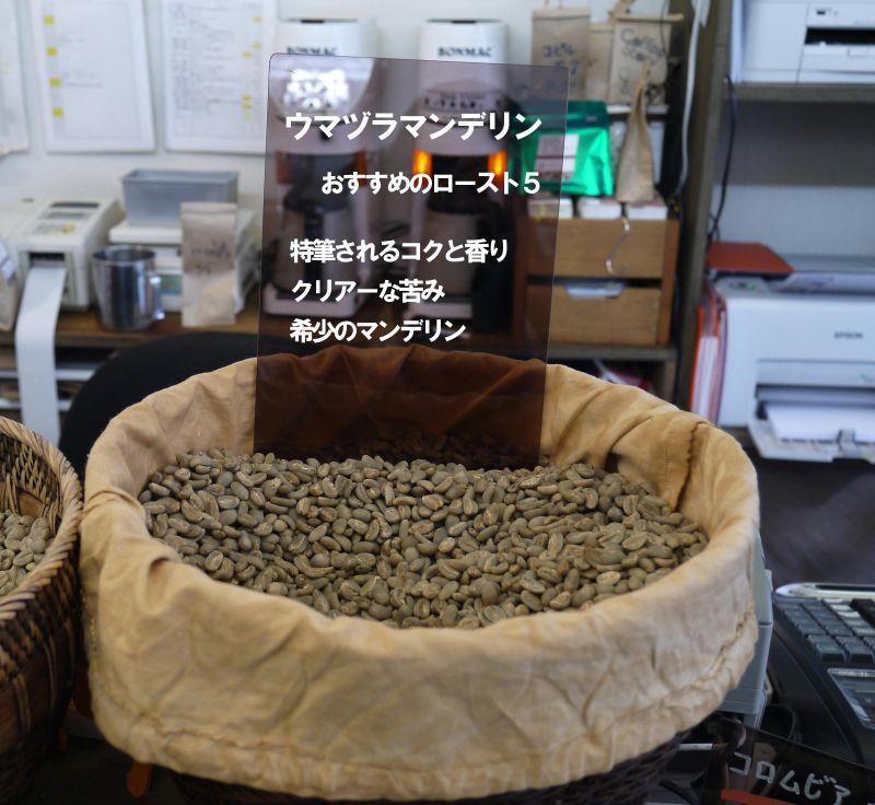 ウマヅラ2_800
