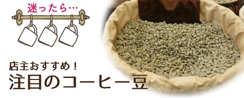 注目のコーヒー豆